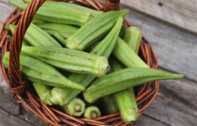 فواید بی شمار بامیه/گیاهی که خاصیت ضد سرطانی دارد