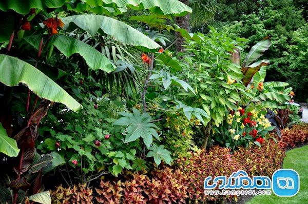 باغ های گل بوچارت چه خدماتی به بازدیدکنندگان ارائه می دهند؟