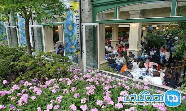 رستوران دنج و زیبای بلو پاپی (The Blue Poppy Restaurant)