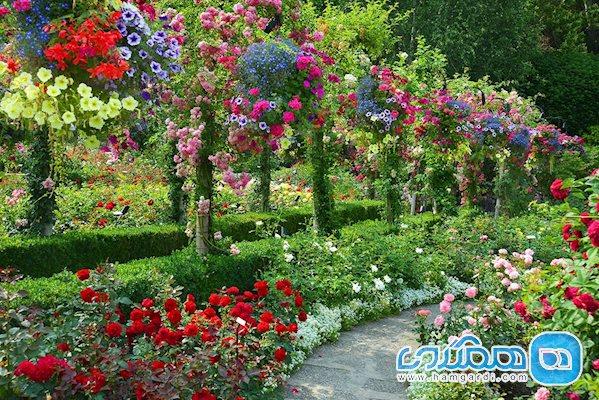 باغ رز (Rose Garden)
