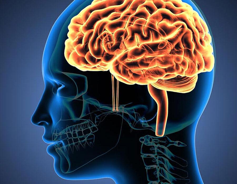 سلامت مغز با انجام دادن چند تمرین ساده