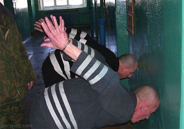زندان دلفین سیاه