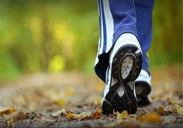 فواید بی نظیر یک پیاده روی ساده