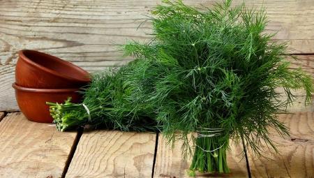 در این روزها این سبزی را به سبدغذایی خود اضافه کنید