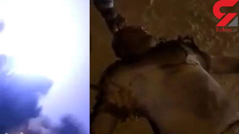 لحظه برخورد مرگبار صاعقه به دو مرد ! / هر دو  خشک شدند + فیلم جنازه ها / کویت
