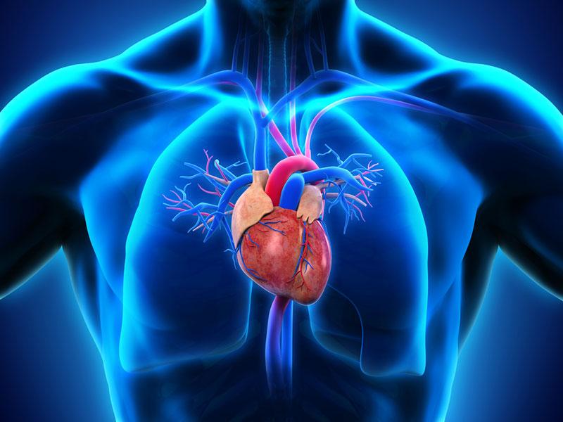 تاثیر ویروس کرونا بر قلب چیست؟
