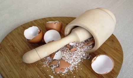 ۸ دلیلی که نباید پوست تخممرغ را دور بیندازیم