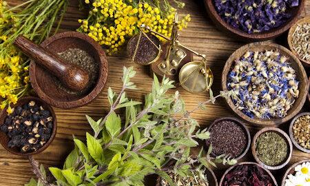 گیاهانی که خاصیت آنتی هیستامین دارند