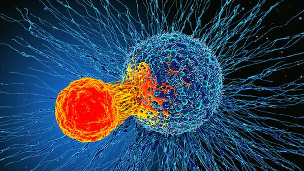 سرطان چیست/نشانهها ، علائم اولیه و هشدار دهنده انواع سرطان