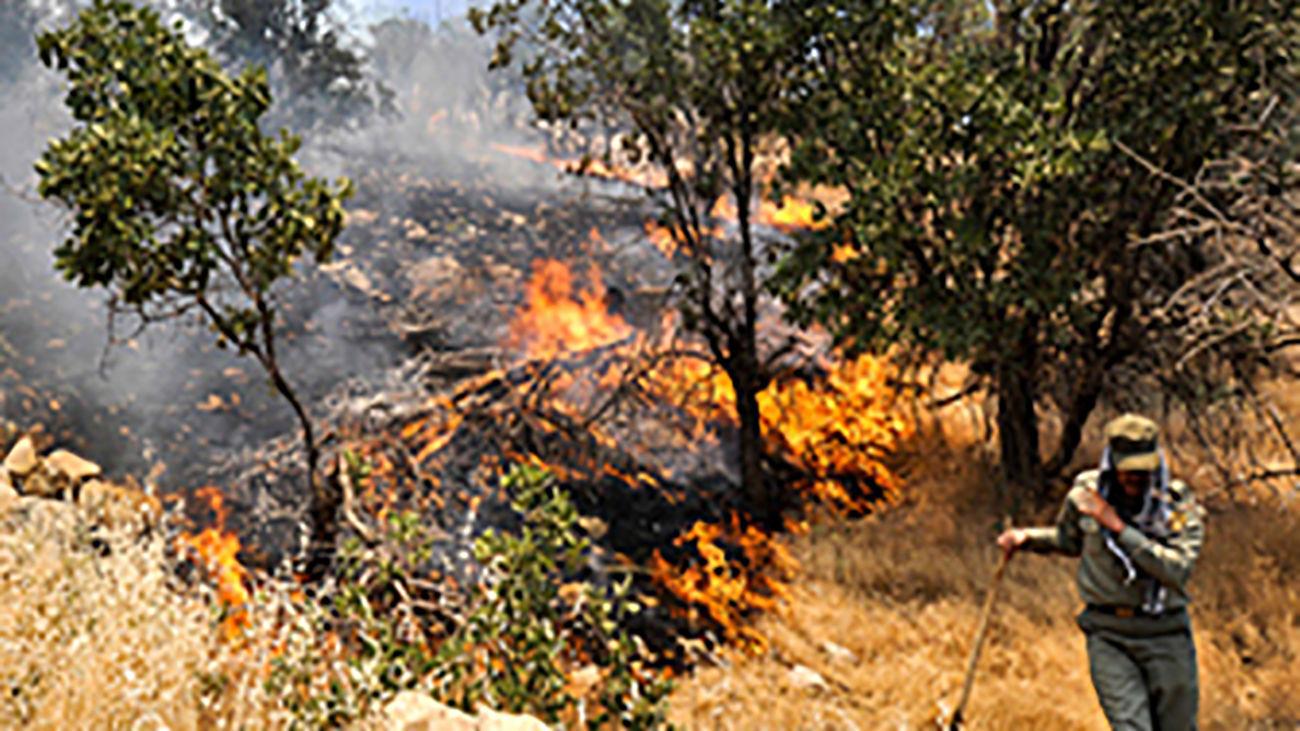نابودی ۳۳ هکتار مرتع شهربابک در آتش