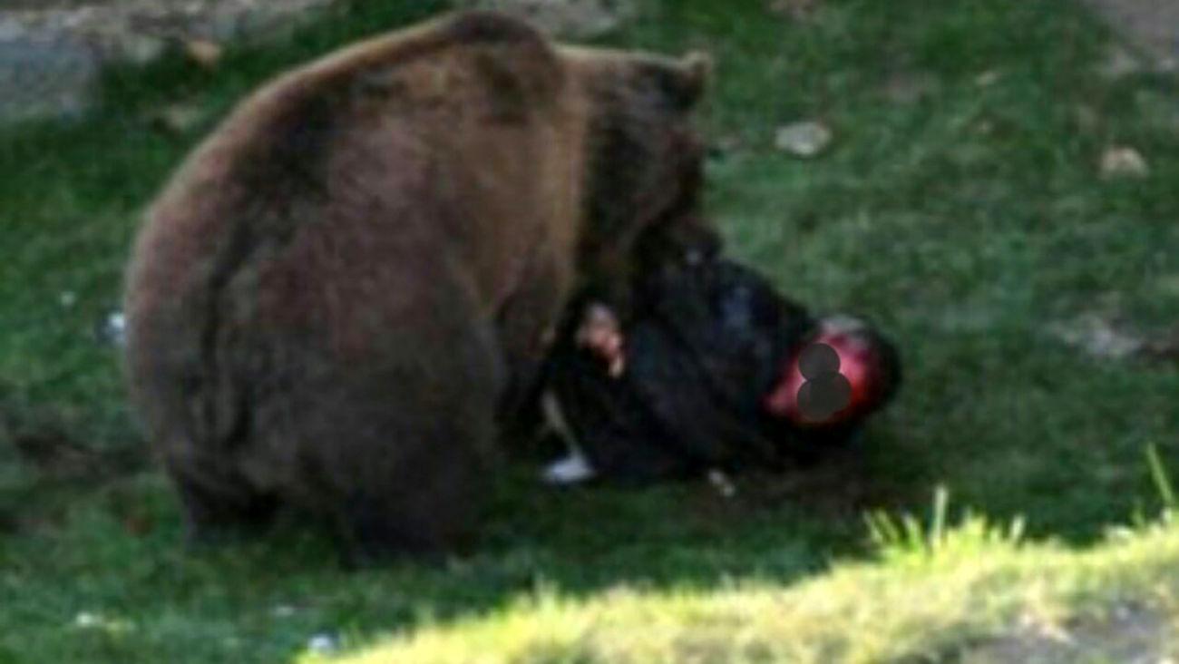 حمله مرگبار خرس وحشی به نوجوان ایذه ای