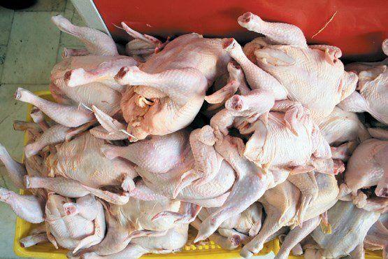 قیمت مرغ به ۱۳ هزار و ۹۰۰ تومان رسید