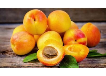 طریقه نگهداری زردآلو؛ یکی از میوههای خوشمزه و پرطرفدار