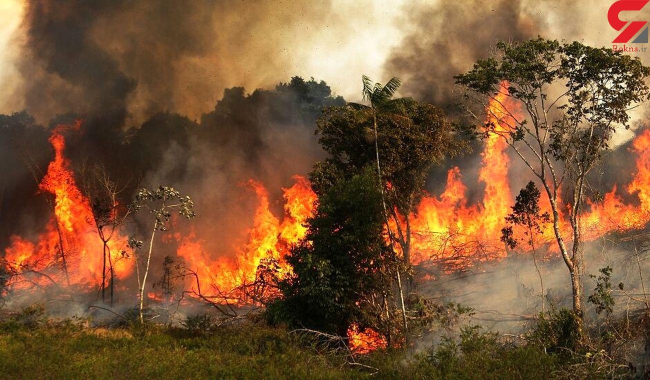 آتشسوزی در منطقه حفاظت شده کوه گزیر ایذه