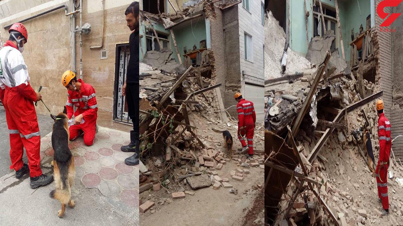 عکس های هولناک از کشف جسد مرد تهرانی با کمک سگ / ناگهان همه چیز آوار شد