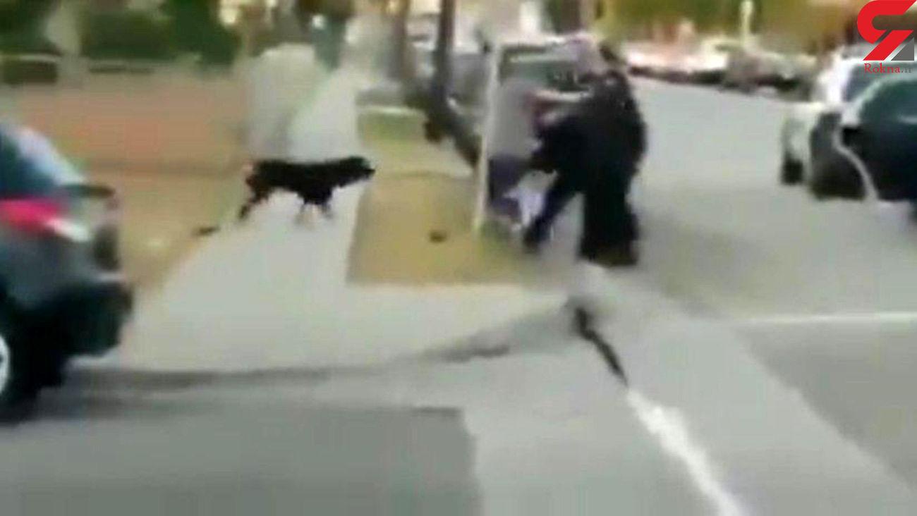 فیلم قتل وحشیانه سگ توسط پلیس / این فیلم کاربران اینترنتی را شوکه کرد / امریکا