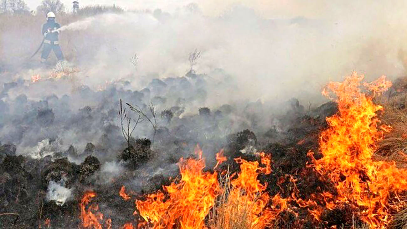 آتشسوزی ارتفاعات پاوه ۲ مجروح گرفت
