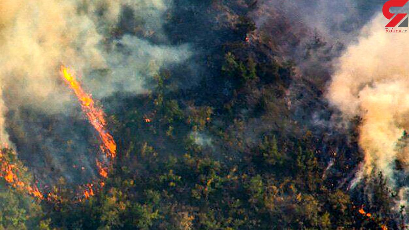 آتش به جان جنگل های ارسباران آذربایجان افتاد