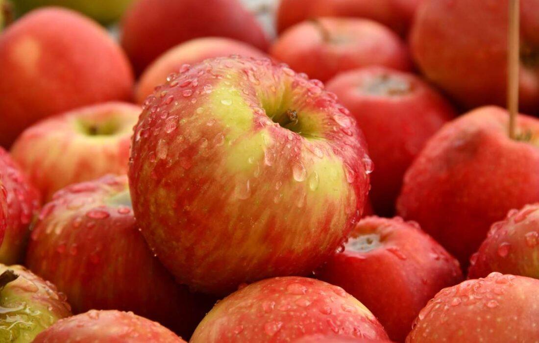 فواید سیب؛ دکتر میوه ها برای سلامتی