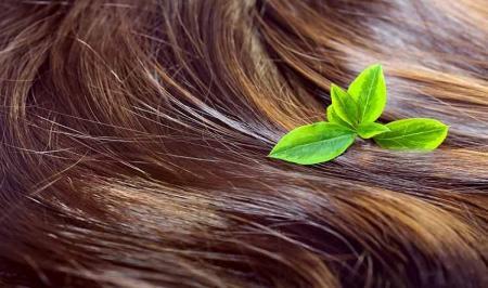 ۸ پیام سلامتی از موها