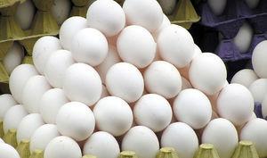 زیان ۵ هزار تومانی مرغداران در فروش تخم مرغ