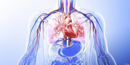 ارتباط  COVID-19 با آسیب قلبی در افراد بهبود یافته