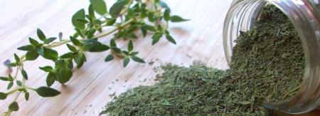 درمان خانگی کمر درد/از این گیاه برای درمان کمردرد استفاده کنید