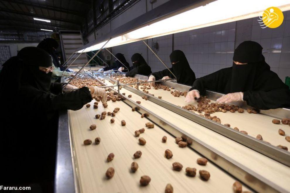 زنان عربستانی شاغل در کارخانه تولید خرما + عکس
