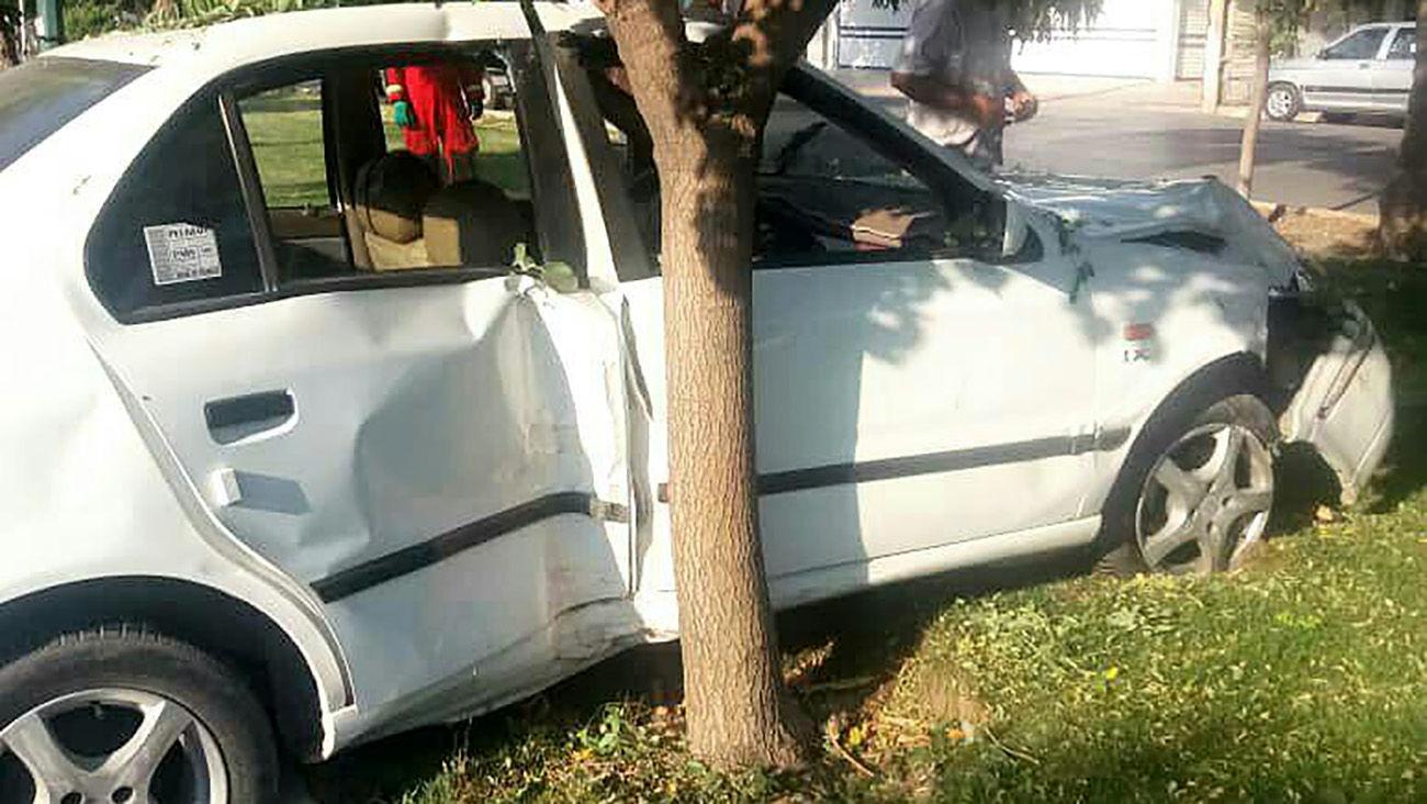 راننده بی احتیاط سمند با سرعت بالا وارد فضای سبز شد / در اتوبان امام علی رخ داد