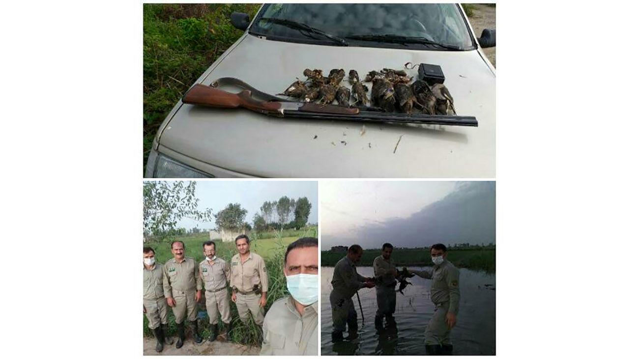 شناسایی و دستگیری شکارچی های غیر مجاز در آمل