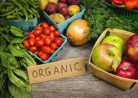 محصولات ارگانیک محصولات ارگانیک غنی از ویتامین هستند و به تقویت سیستم ایمنی بدن کمک می کنند!