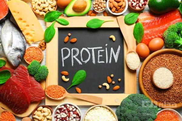 خطر مصرف بیش از حد پروتئین /ما چه قدر پروتئین احتیاج داریم؟