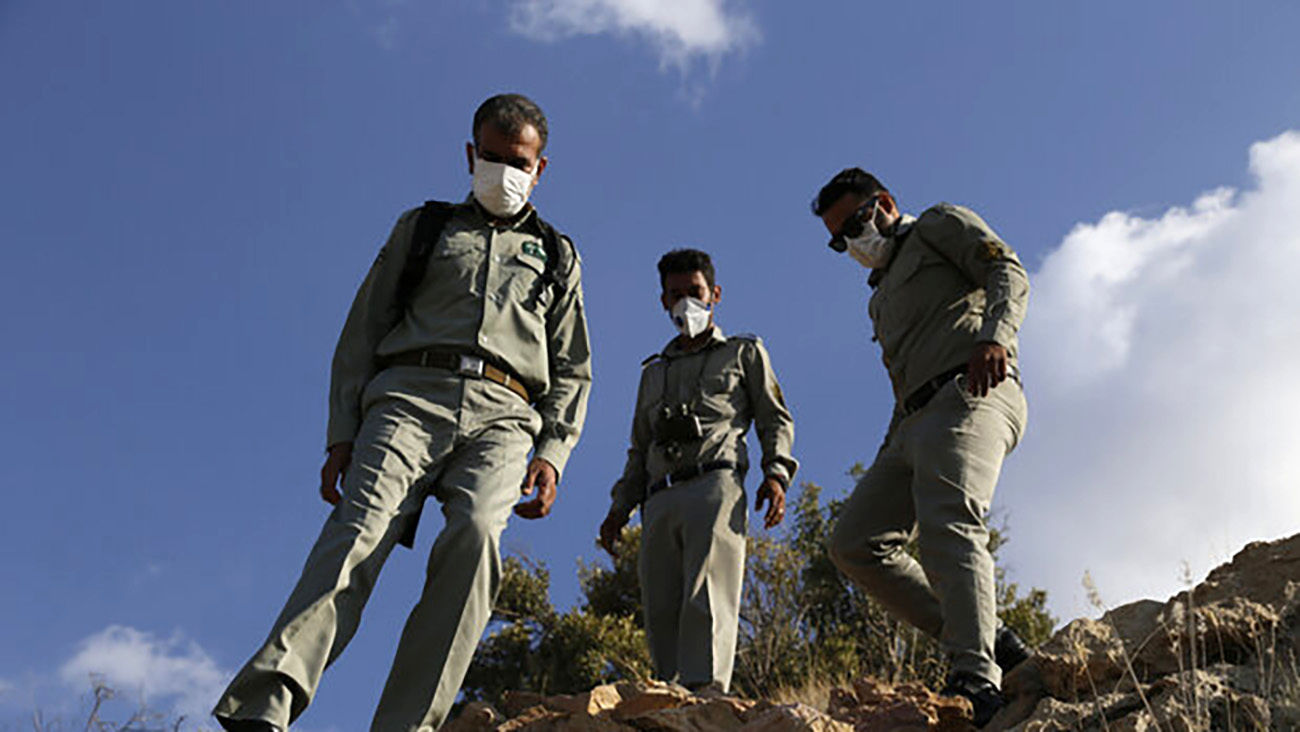 دستگیری ۵ نفر از ضاربین محیط بان تهرانی/ ۳ نفر افغانستانی بودند
