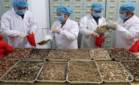 راهکار طب ایرانی برای کنترل کرونا