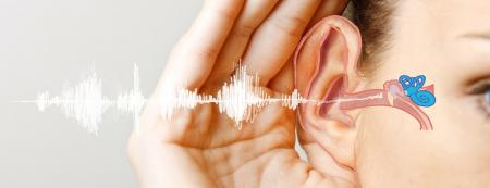 نقش تغذیه در سلامت گوش چیست؟