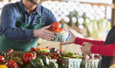 اختصاصی| تاثیر محصولات ارگانیک بر سیستم ایمنی: مثبت یا منفی؟