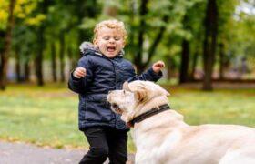 ترس از حیوانات یا حیوان هراسی خود را درمان کن