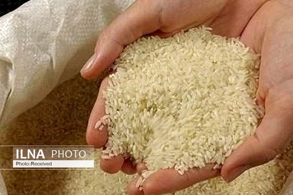 برنجهای رسوبی در گمرک را رها میکنیم/ برنجهای دپویی با محصول درجه یک داخلی همقیمت است