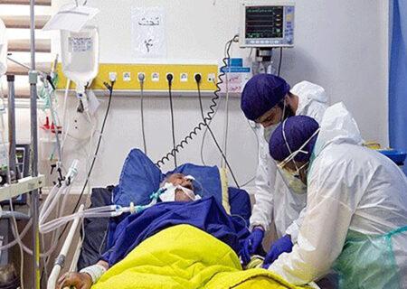 بستری۴۲  بیمار جدید مبتلا به کرونا ویروس در مراکز درمانی کاشان