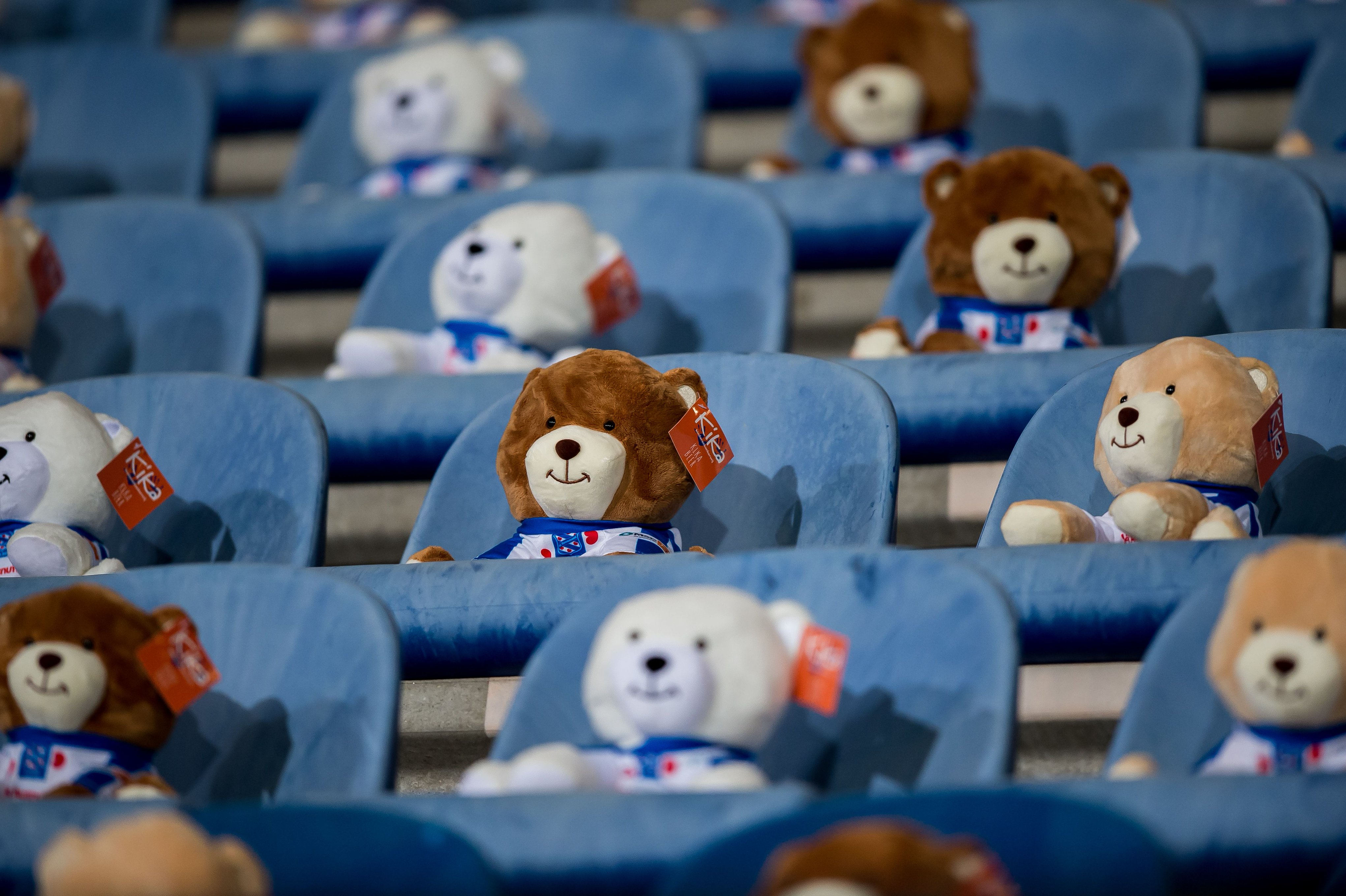 خبرگزاری فارس – اقدام جالب باشگاه هیرنفین/۱۵ هزار عروسک در ورزشگاه برای حمایت از کودکان سرطانی+عکس