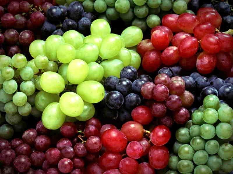 انگور؛ 8 خاصیت شگفت انگیز انگور (Grape) برای سلامتی بدن