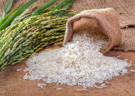 برنج تنظیم بازاری از فردا پخش میشود /روغن وفور در همه فروشگاهها خواهد بود