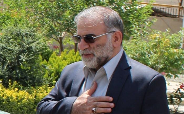 زندگینامه شهید محسن فخریزاده