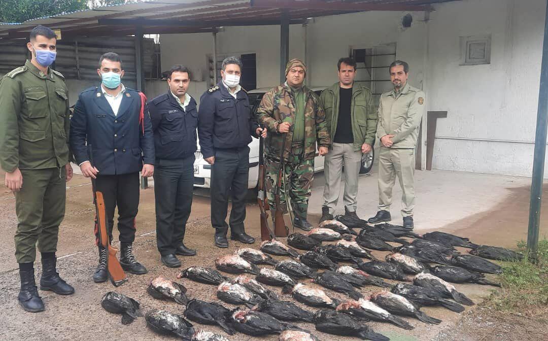 شکارچی ۴۲ قطعه پرنده ماهی خوار مهاجر در دام نیروی محافظت از محیط زیست گیلان