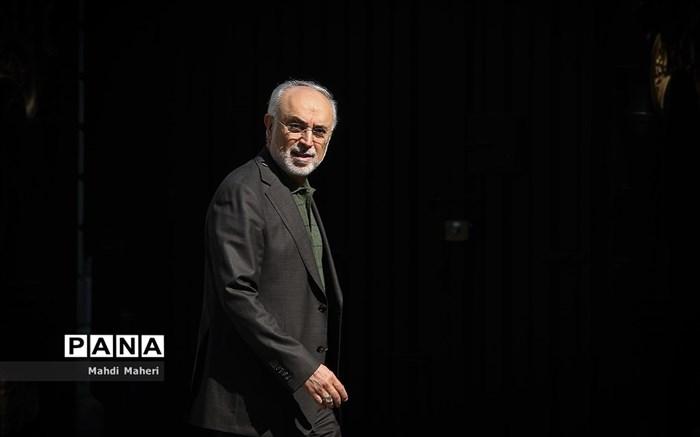 صالحی: اصلاح جهان امروز نیازمند احیای معنویت دینی است