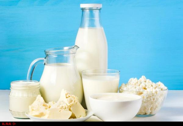 قاچاق شیرخشک و گرانی نهادههای دامی دو دلیل افزایش قیمت لبنیات/ کارخانهها هر روز شیرخام را گرانتر میخرند