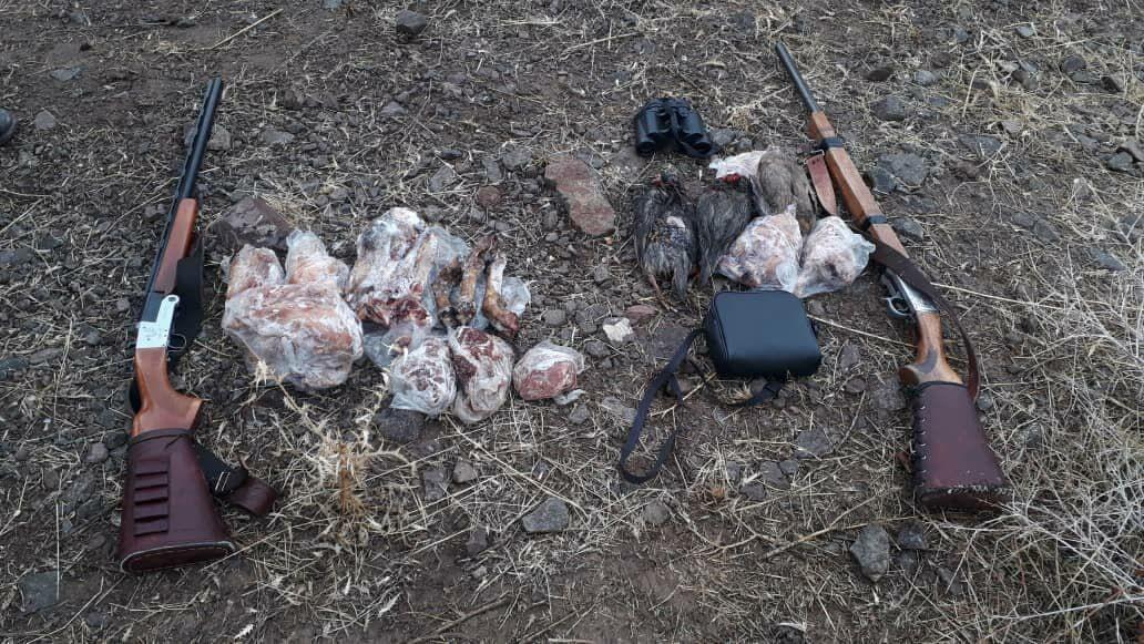 کشف ۲۵۵ پرنده مهاجر از شکارچیان غیرمجاز در هورالعظیم