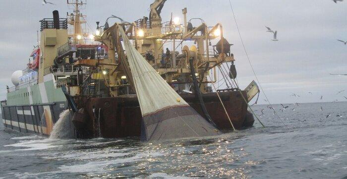 ۲ فروند کشتی صید ترال در جاسک توقیف شد