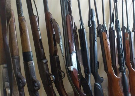 افزایش ۳۲ درصدی کشف سلاح توسط محیط زیست استان تهران