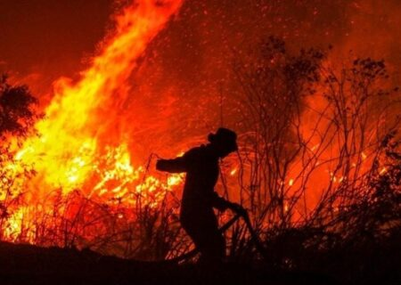 """علت آتشسوزی جنگل """" توسکستان """" مشخص شد/ اعزام ۱۴۰ نیرو برای اطفاء حریق"""